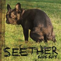 Seether - 2002-2013